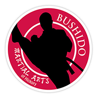 Foothills Gymnastics offers Bushido Martial Arts of Hickory